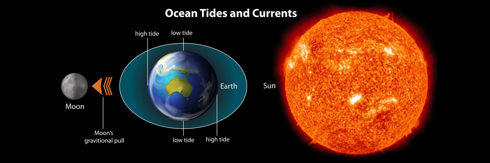 """illustration of moon, earth and sun's gravitational pull, showing how low and high tides happen """"Ocean Tides and Currents"""""""