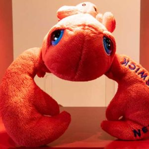 Reversing Falls Gift Shop: toy lobster (New Brunswick label sewn on cloth claw)